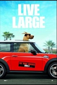 Marmaduke Movie Poster 2010