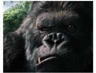 King Kong Movie Still: King Kong