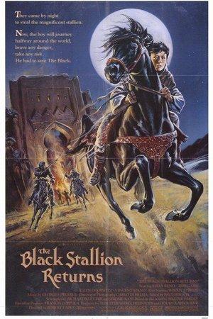 Black Stallion Returns