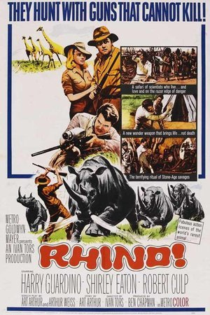 Rhino!