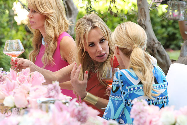 'Real Housewives of Beverly Hills' Recap: A Tempest in Lisa's Tea Party | Recap | Hollywood.com