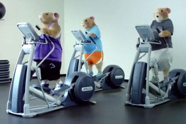 2014 Kia Soul Hamster Commercial