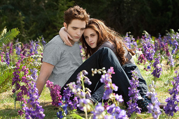 twilight bd part 2